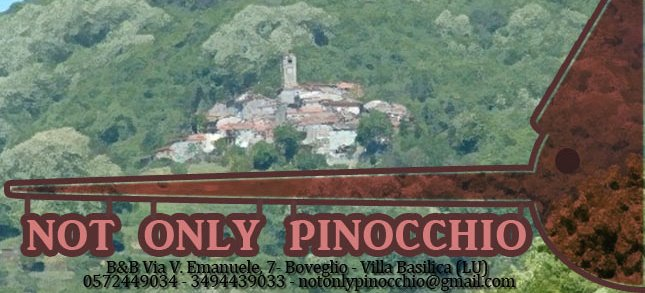 BnB Not only Pinocchio, Lucca, Italy